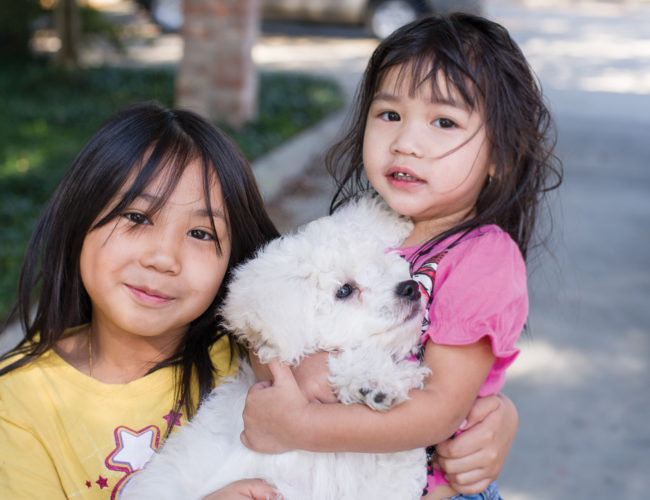 Inclusion = Lifesaving: girl with dog